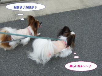16-04_20110718093434.jpg