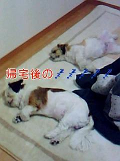 お休み_0001
