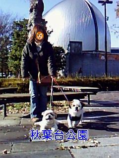 秋葉台公園_0001