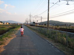 あすみ自転車2.jpg