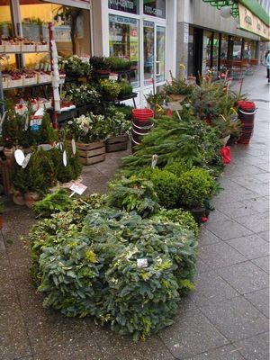 ドイツの花屋さん2