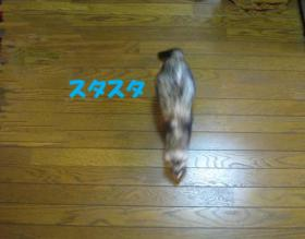 20070614231157.jpg