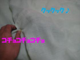 20070724220155.jpg