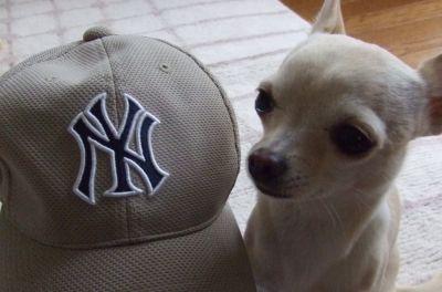 くり&帽子2