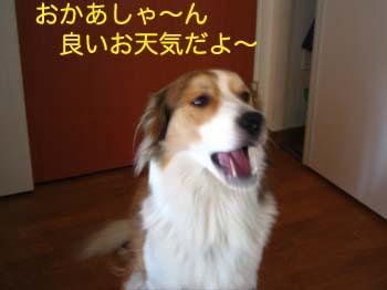 2007032701.jpg