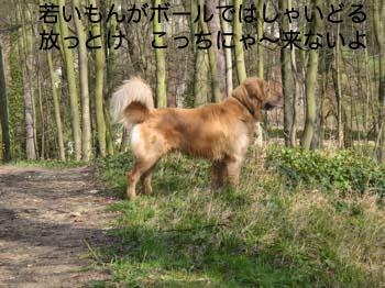 2007032714.jpg