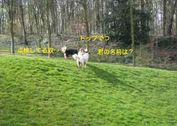 2007032717.jpg