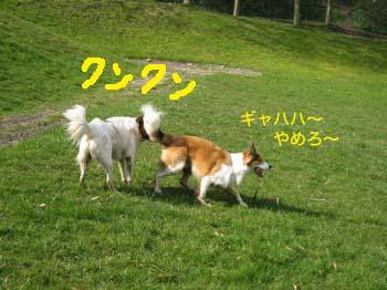 2007032718.jpg
