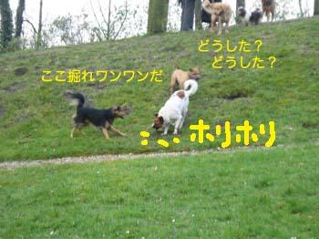 2007032719.jpg