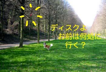 2007032802.jpg