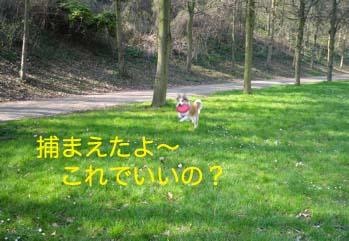 2007032803.jpg