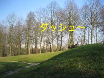 2007032816.jpg