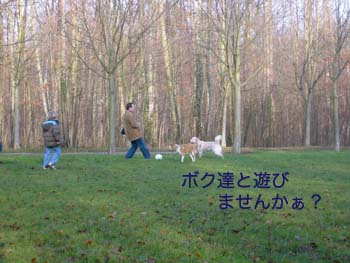 2007040114.jpg