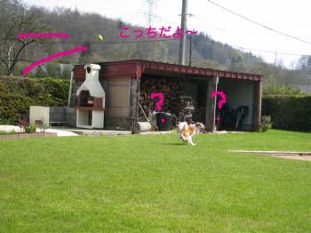 2007040508.jpg