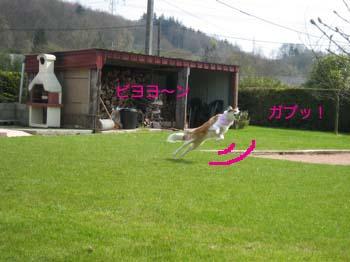 2007040511.jpg