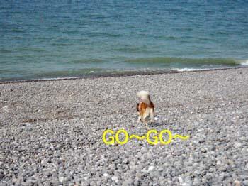 2007041609.jpg