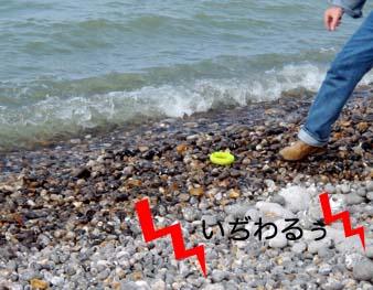 2007041612.jpg