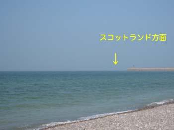 2007041617.jpg