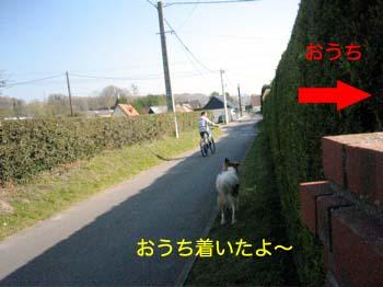 2007041706.jpg