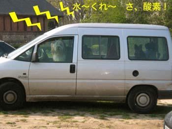 2007041922.jpg