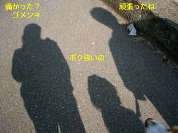2007042210.jpg