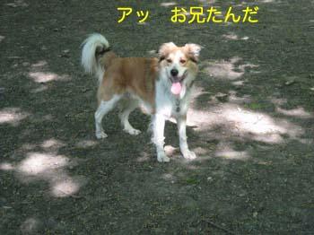 2007042417.jpg
