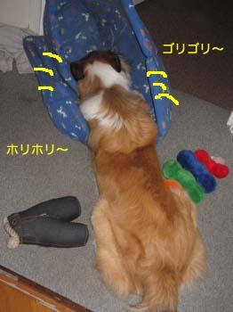 2007051103.jpg