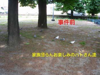 2007051202.jpg