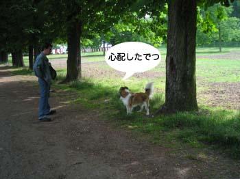 2007051214.jpg