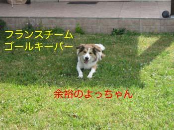 2007051509.jpg
