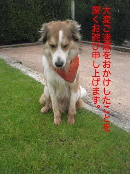 2007061809.jpg
