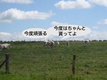 2007070119.jpg