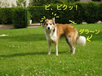 2007070609.jpg