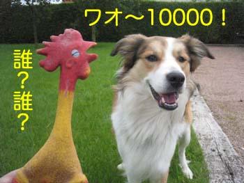 2007071101.jpg
