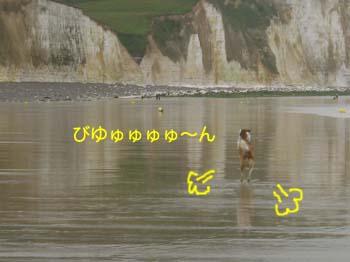 2007071508.jpg