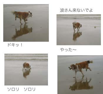 2007071510.jpg