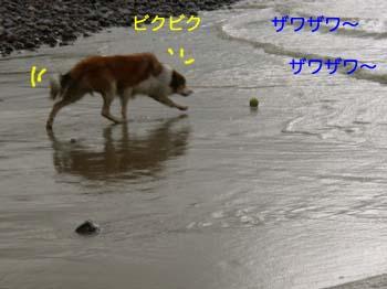 2007071516.jpg