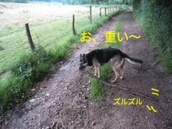 2007072507.jpg