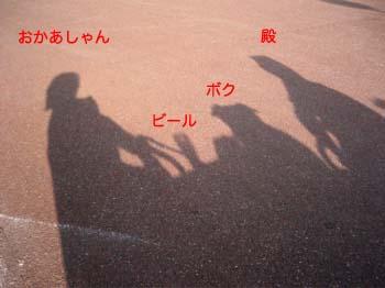2007082016.jpg