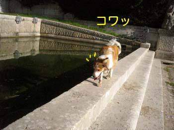 2007091209.jpg