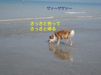 2007100716.jpg
