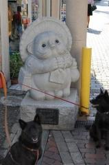 kisarazu2.jpg