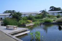 金沢城 ふれあい広場の庭園