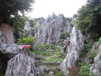 金剛石林山05
