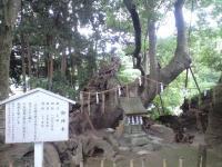 草薙神社02