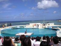 美ら海04