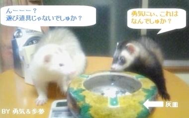 あゆむ&ゆうちゃん2