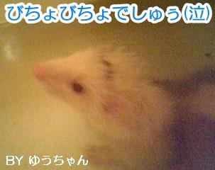 ゆうちゃんの入浴タイム