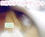 お休みタイム中☆