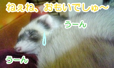 うなされているあゆむさん☆